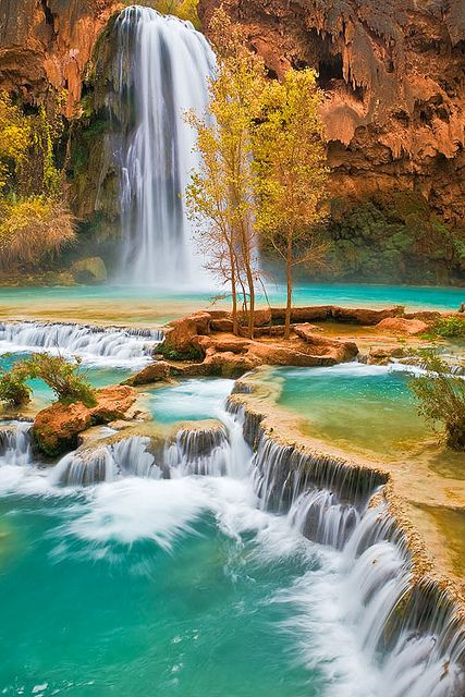 Havasu Falls are located in the south rim of the Grand Canyon in Arizona on the Havasupai Indian Reservation.