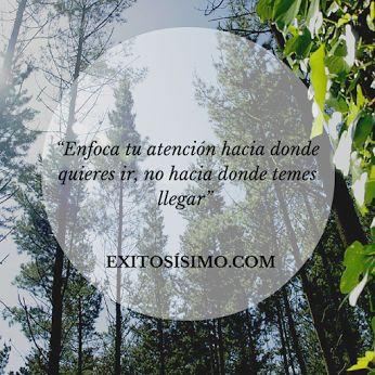 Utiliza a tu favor el poder del enfoque! #motivación #éxito #exitosísimo #frasedeldía #FelizLunes  www.exitosísimo.com