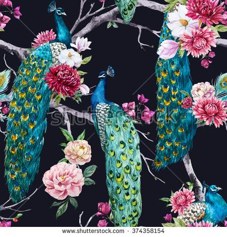 watercolor pattern peacock sitting on a tree with pink flower, chrysanthemum flower, bougainvillea, white magnolia, peony pink, dark background - stock photo