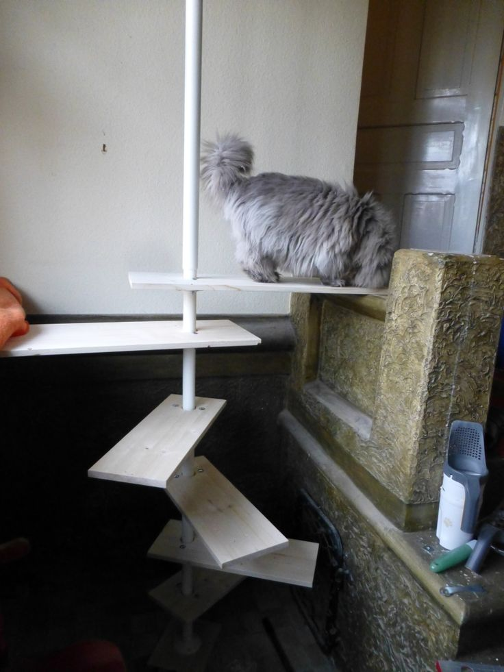 Aufstieghilfe für Katzen Ikea hack mit Stolmen Regalsystem #diy #katze #cat #ikea #hack