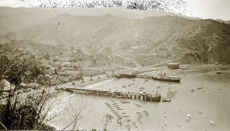 1000 images about catalina island on pinterest for Catalina bay