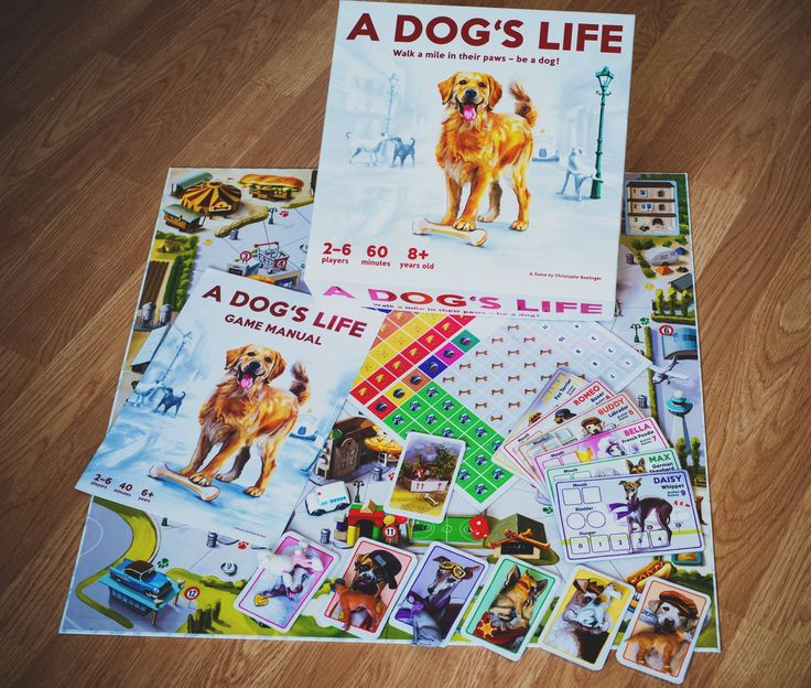 Such beautiful colors and design! Explore Dogsville in this board game and play with your favorite breed to challenge your friends or family!