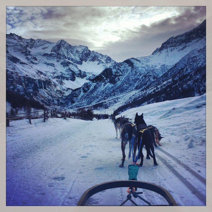 Husky sledding, French Alps