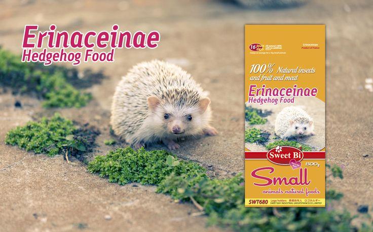 SWT680-Erinaceinae Hedgehog Food