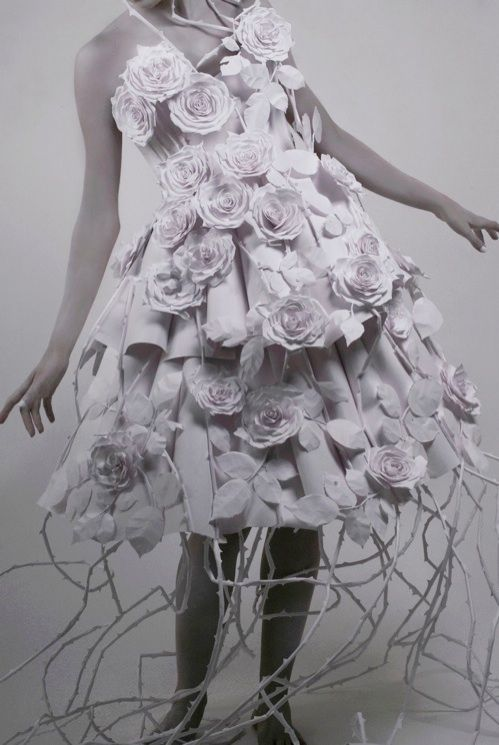 Google Image Result for http://www.mandysmithwork.com/Paper_Dress_files/droppedImage.jpg
