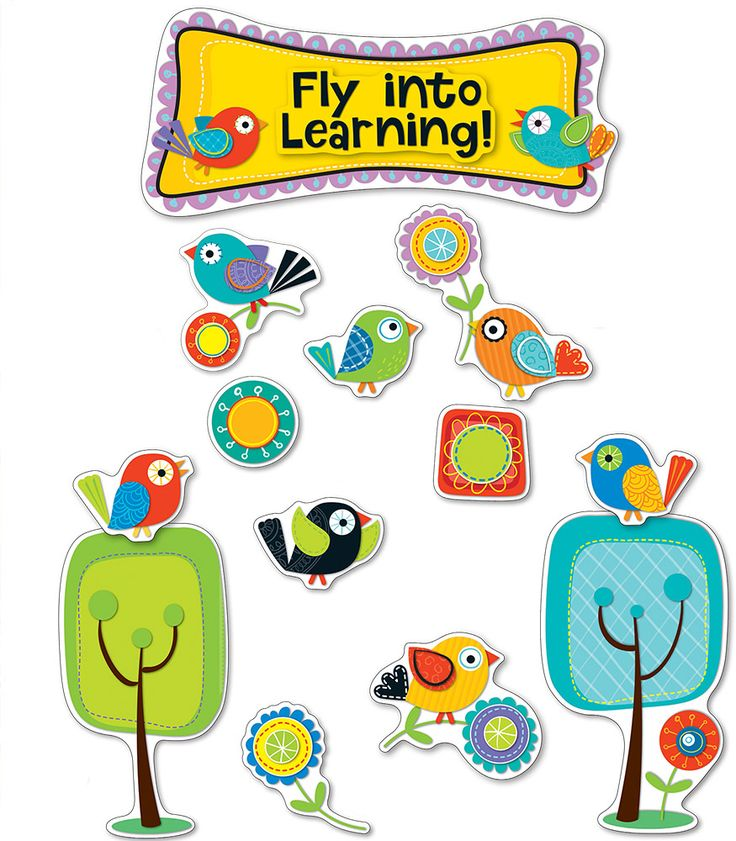 Classroom Decor Birds ~ Best bird bulletin boards ideas on pinterest