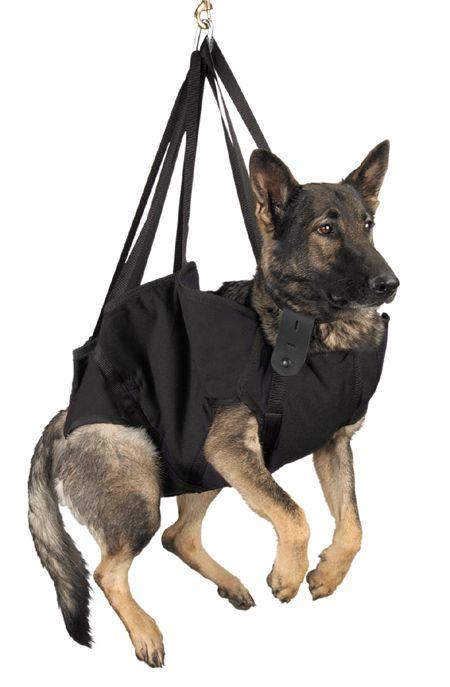 23 Best Dog Sling Images On Pinterest Doggies Dog