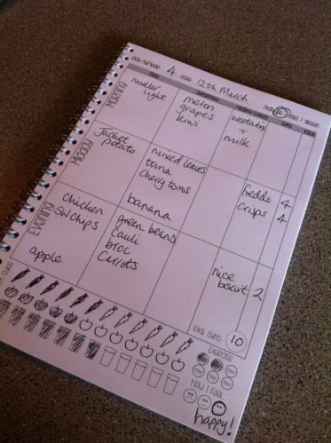 food diary planner Slimming World diet, tracker, helps with weight loss! | eBay