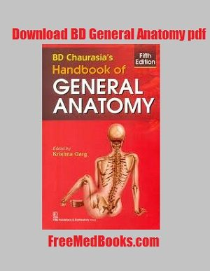 Read our review of BD Chaurasia handbook of general anatomy pdf, and BD Chaurasia Human anatomy pdf (volume 1,2 & 3). Download them in pdf format free...