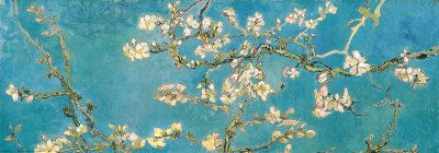 Almond Branches in Bloom by Van Gogh