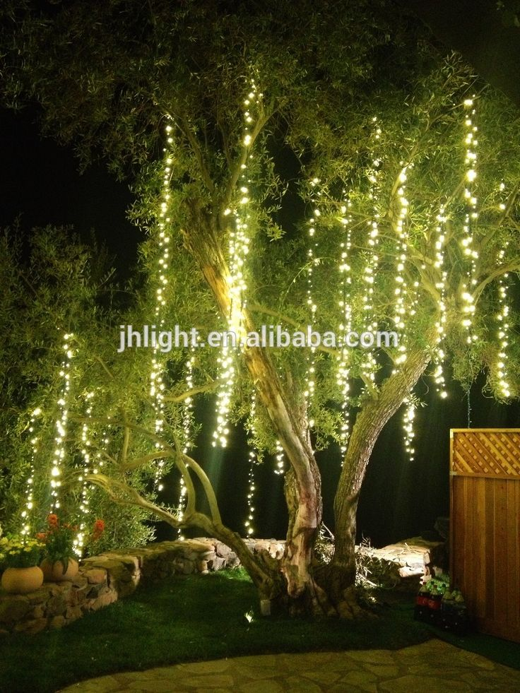 16 best tree lights images on pinterest christmas lights for How to hang string lights without trees