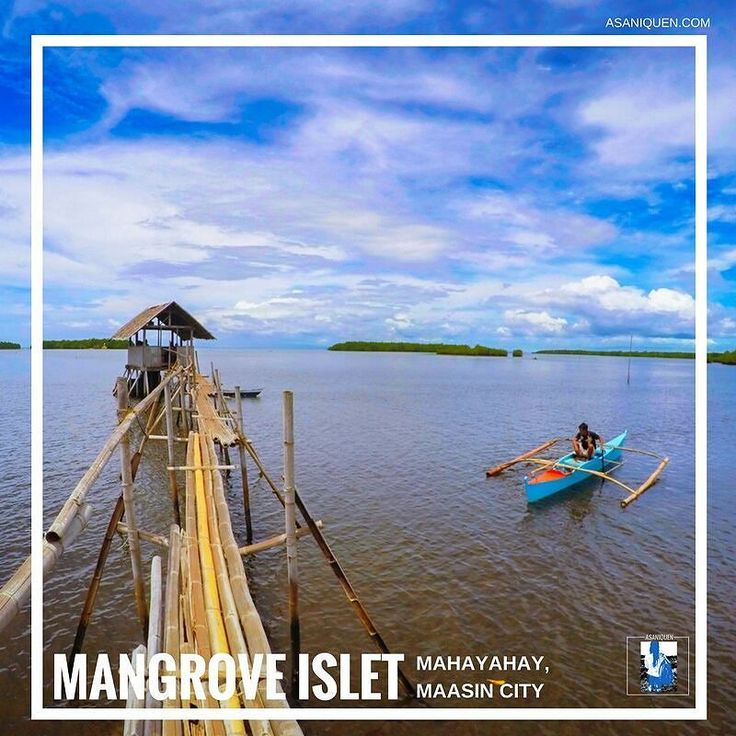 a scenic spot in Maasin City Southern Leyte  #mangroveislet #maasincity #southernleyte #travel #asaniquen