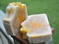 Coco Mango Soap (Palm Free, Coconut Milk, Mango Butter)