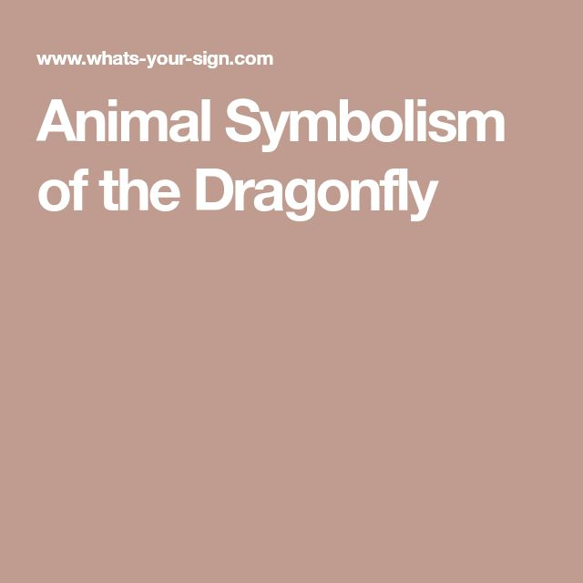 Animal Symbolism of the Dragonfly