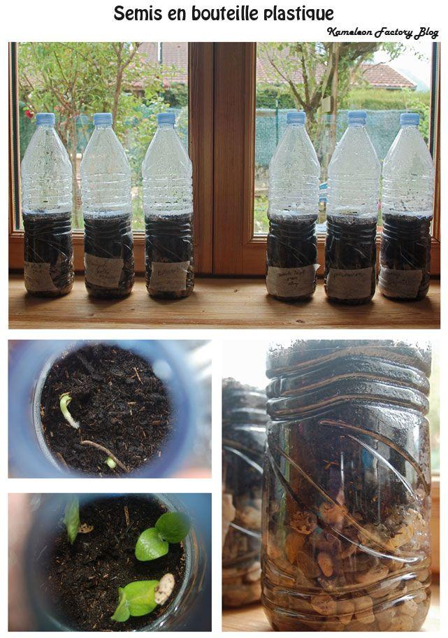 Faire les semis dans des bouteilles en plastique. Mini-serre. kameleon Factory Blog