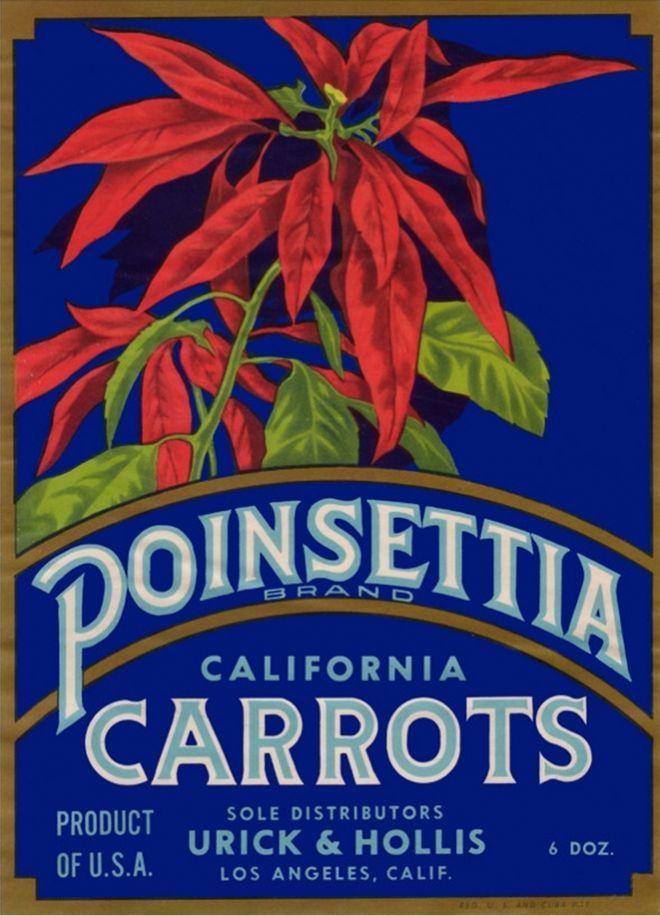 Poinsettia Carrot Label – Los Angeles, CA