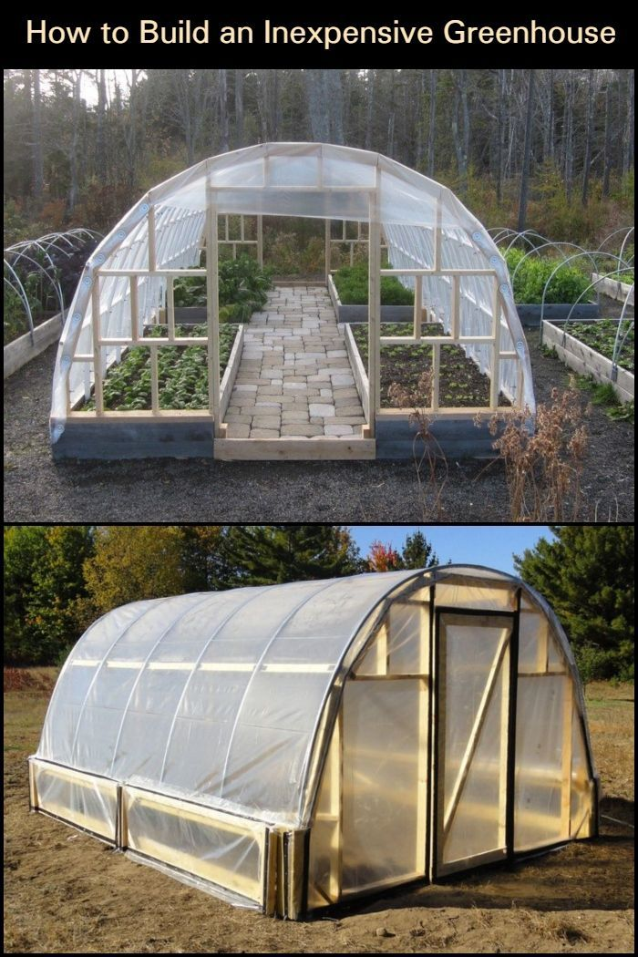 Cheap N Easy Greenhouse Could Do This Next To The Garage On The Concrete Slab Oh Honey Here S Another Backyard Greenhouse Simple Greenhouse Diy Greenhouse