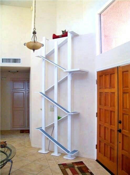 Escalador para gatos.