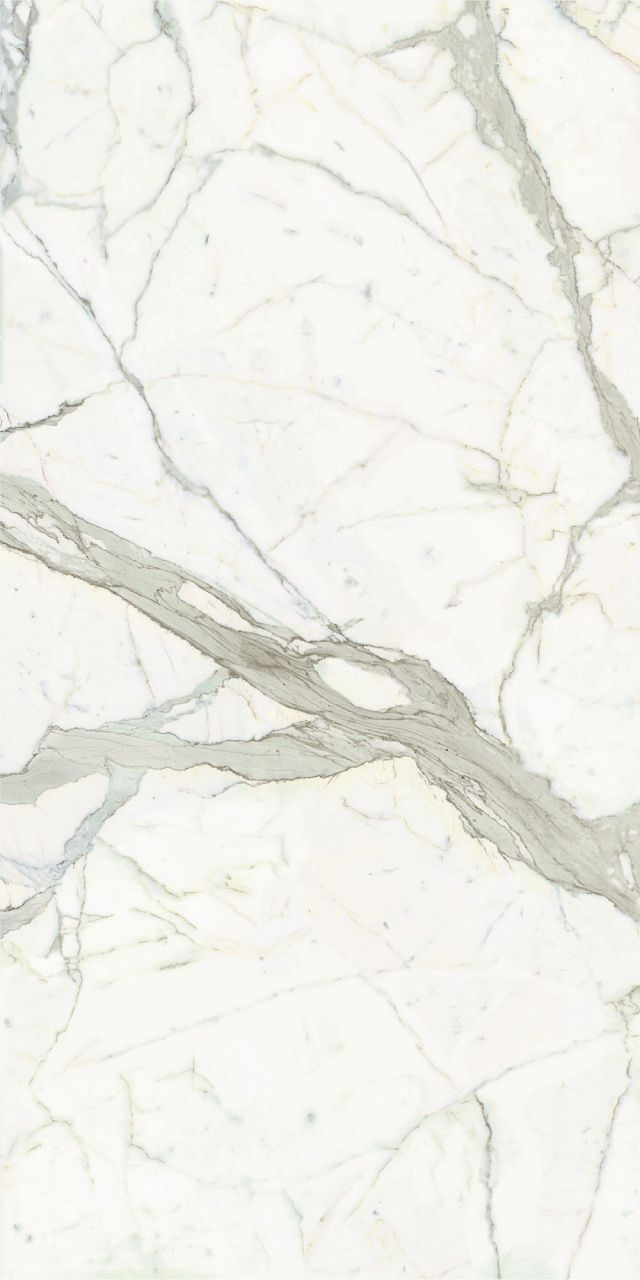 calacatta tile. Good colour but this a large scale tile, nothing small.