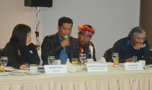 Servindi » Perú: Informe Alternativo observa debilidades en el cumplimiento del Convenio 169 de la OIT | Servicios en Comunicación Intercultural Servindi