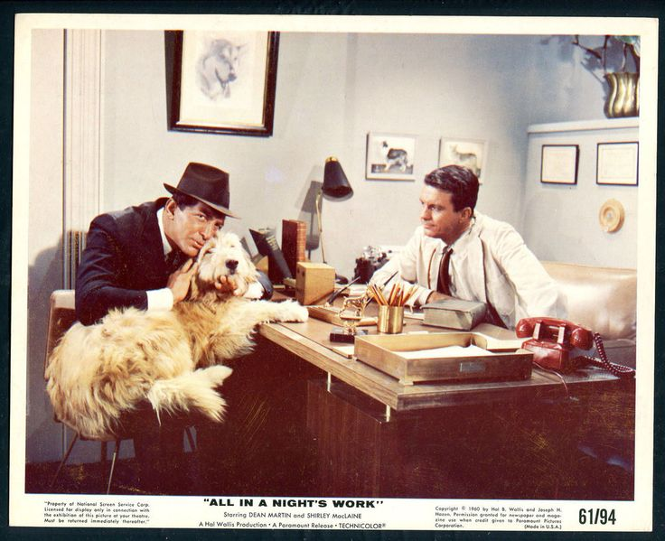 DEAN MARTIN CLIFF ROBERTSON DOG All In A Night's Work '61