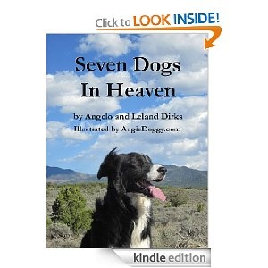 A book by my Border Collie, Angelo, and me