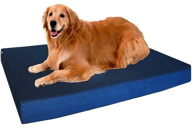 Dogbed4less Orthopedic Memory Foam Dog Bed | Orthopedic Dog Bed | Orthopedic Dog Bed Reviews #FavoriteMemoryFoam