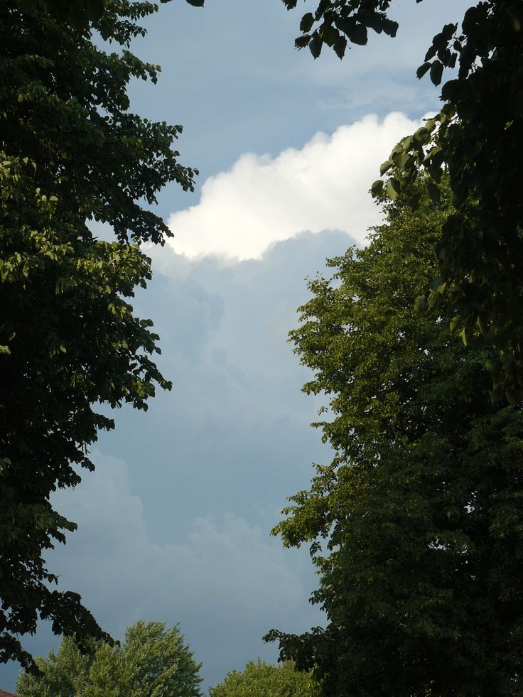 clouds suggesting rain