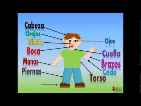 ▶ Las Partes Del Cuerpo Para Niños, Our Body Parts In Spanish For Children (Video Infantil) - YouTube