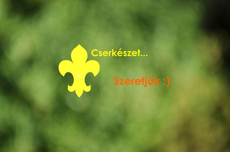 363 Scarbantia cserkészcsapat - A soproni cserkészek honlapja