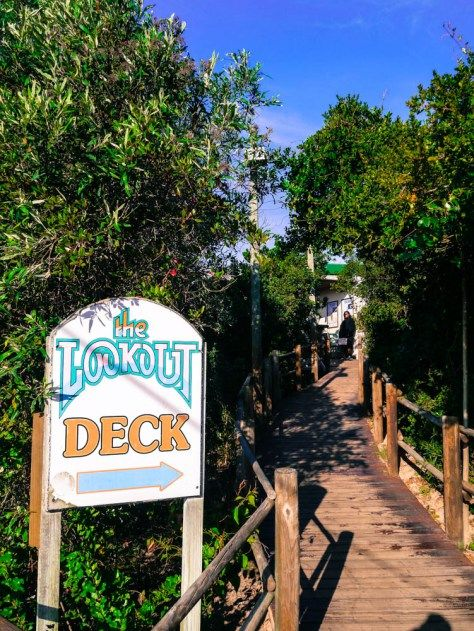 The lookout Deck restaurant in Plettenberg Bay - great seafood with lovely views!