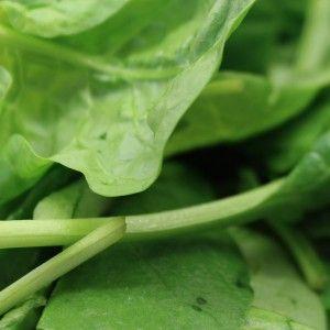 groene bladgroente detox