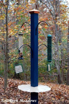 DIY Bird Feeding Station for our winged friends.  Start now for winter food sources.