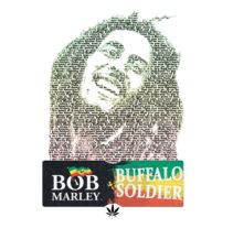 Logo #3 : Buffalo Soldier