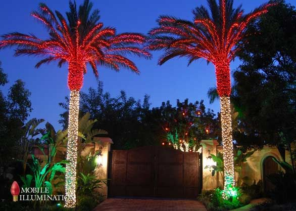 8 Best New House Xmas Lights Images On Pinterest Holiday. Home And Palm  Trees ...