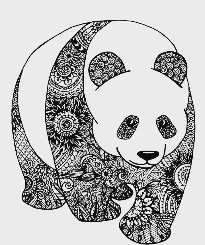 Panza Zentangle Art Panda Mandalas Animales Dibujos Zentangle