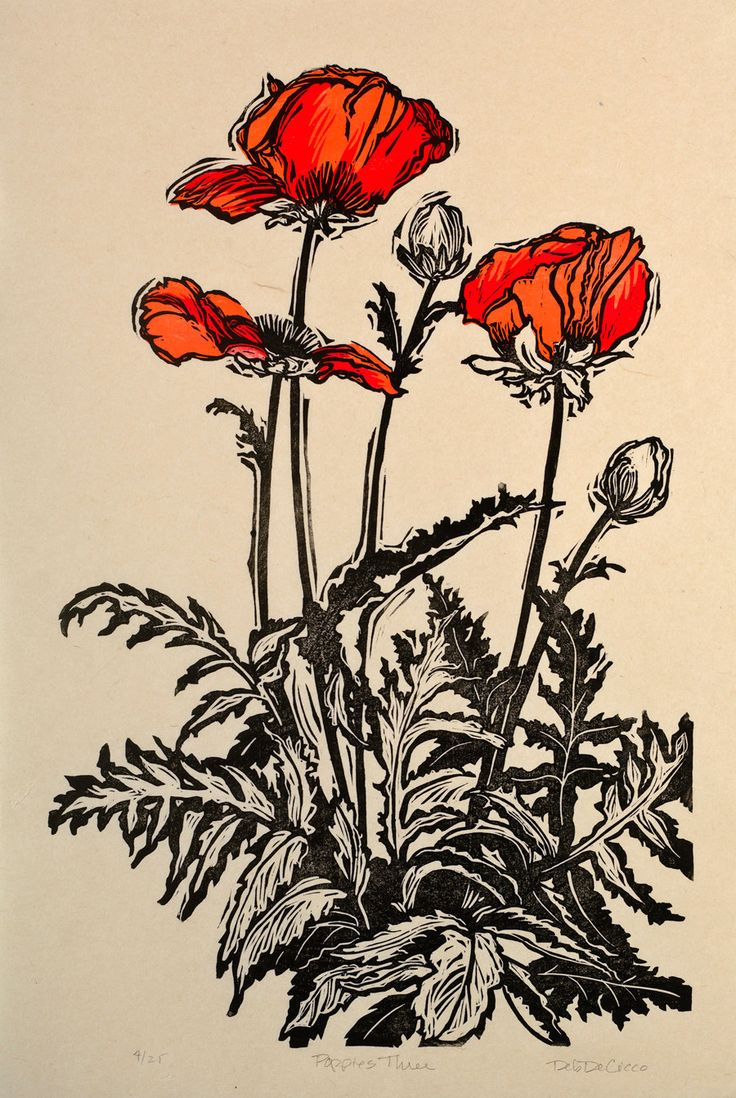 Three Poppies Woodblock Print by DebDeCiccoPrints on Etsy