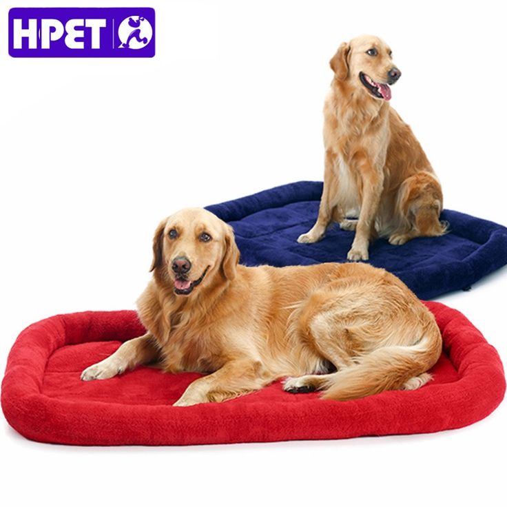 Large Dog Bed Big Size Pet Doggy Cushion Warm Sleeping Bed for Golden Retriever Dog Cage Mat Pet House Mat // FREE Shipping //     Buy one here---> https://thepetscastle.com/large-dog-bed-big-size-pet-doggy-cushion-warm-sleeping-bed-for-golden-retriever-dog-cage-mat-pet-house-mat/    #catoftheday #kittens #ilovemycat #lovedogs #pup