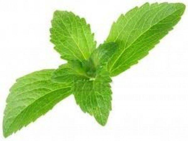 Is Stevia a Safe Alternative to Sugar?