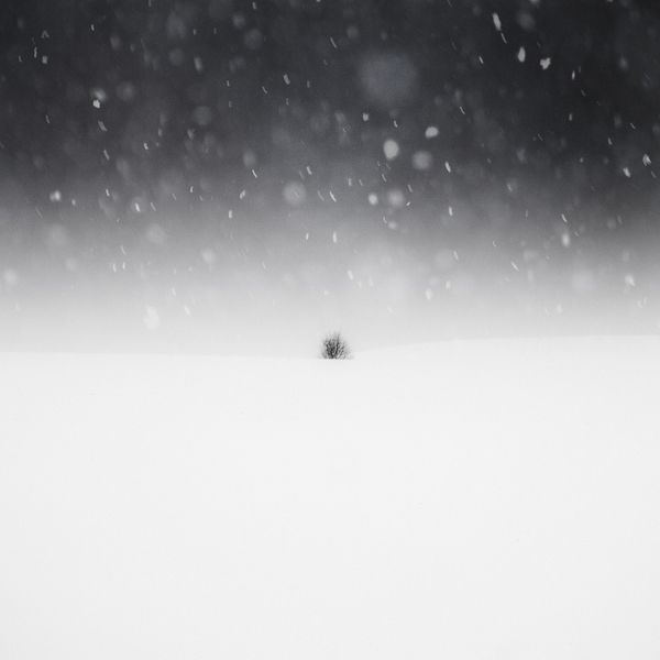 snowscape 7, photography by Zoltan Bekefy