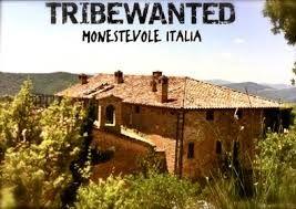 tribewanted 1
