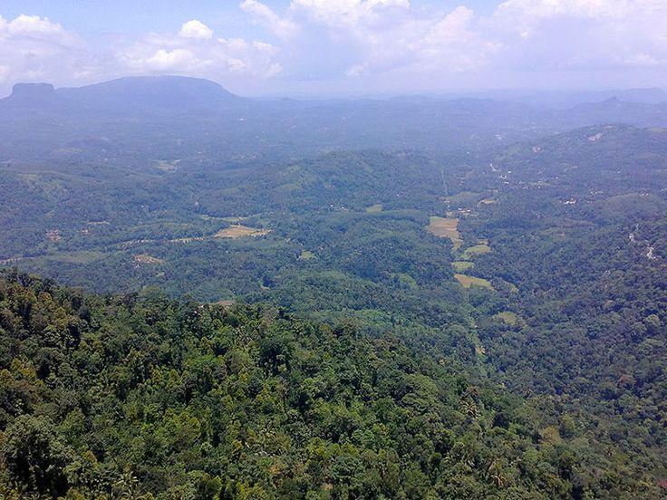 Upptäck Sri Lankas sagolika natur