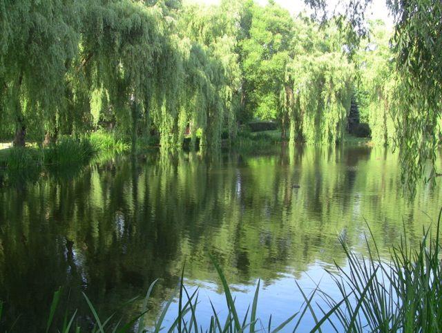 Park Oruński | #gdansk #walkingtours #parks