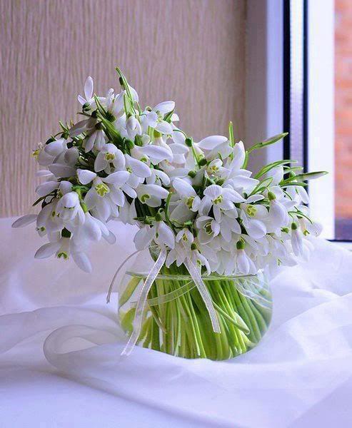"""Zelk Zoltán: Hóvirágok, ibolyák  """"Jó reggelt, Nap, ég, hegyek, aludtunk egy éven át.."""" Így köszönnek a kibújó hóvirágok, ibolyák.  """"Jó reggelt, szél, fellegek, jó reggelt, te szép világ!"""" Bólogat a kék ibolya, nevetgél a hóvirág.  """"Jó reggelt, fa, kis bogár, mikor hajt rügyet az ág? Mikor lesz az ágon levél, levelek közt száz virág?""""  """"Jó reggelt, virágszedők, Örül, aki minket lát..."""" Jő a tavasz, hirdetik a Hóvirágok, ibolyák"""
