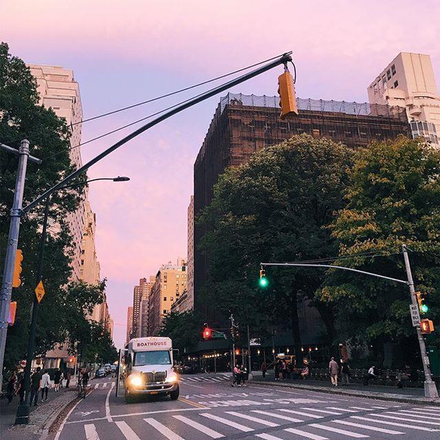 Ozge Hiz / Central Park, New York, #pinksky, sunset hour