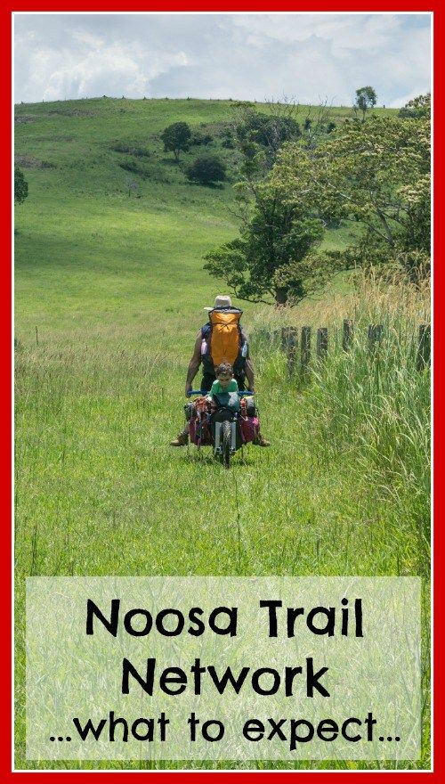 The Noosa Trail Network is a series of eight scenic hinterland trails that are awesome for walking, horse riding or mountain biking. The trails are well signed and vary in length and difficulty. You can absolutely do these trails with kids! Just make sure you choose one of suitable length and difficulty.