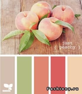 Home Inspiration - Peach Theme:Peach Color Tone