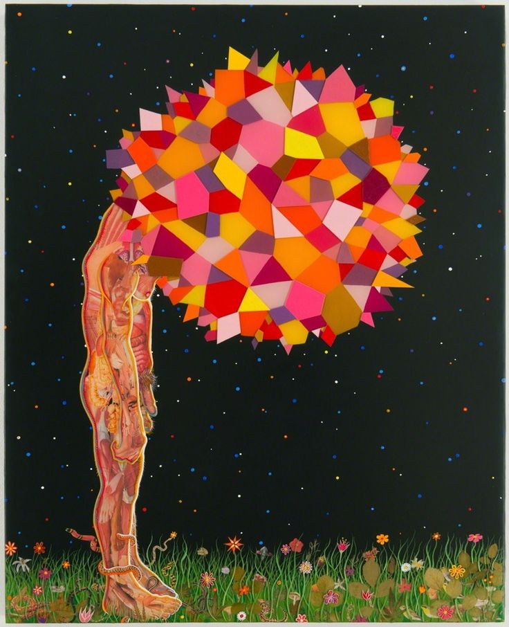 The Psychedelic Art of Fred Tomaselli   Hi-Fructose Magazine