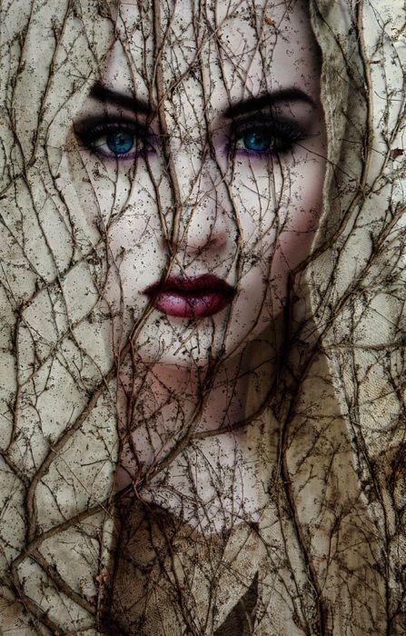 lady wood