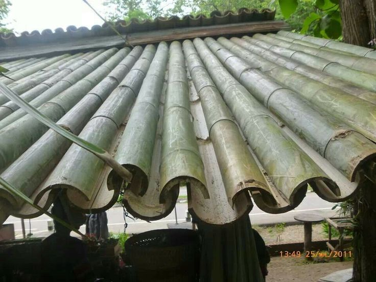 Bamboo roofing - Great if I'm ever on Survivor! LoL!